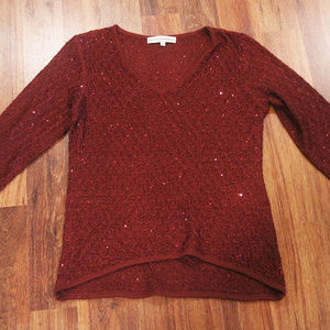 Nicole Alexander shimmer sequined sweater